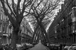 20180211-Amsterdam-Leica-Noct-PanF-AM74-129